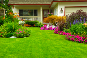 Home Remodeling and Landscaping
